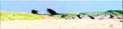 tableau paysages plage vacances noirmoutier lutins : LA PLAGE DES LUTINS