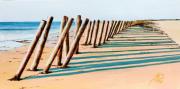 tableau paysages mer plage noirmoutier brise lame : LES CULS NUS