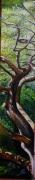 tableau paysages bois de la chaise noirmoutier ile chene vert : RÉCHAUFFÉ DE SOLEIL