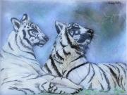 tableau animaux tigre verre peinture animaux : Deux tigres blancs