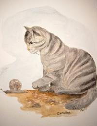 le chat et l'escargot