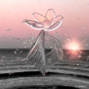 autres fleurs tanelau artistique sous verre acrylique decoratif contemporain : danse de fleur