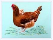 tableau animaux poule poussin : L'ART de VOYAGER à L'OEIL