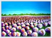 tableau fleurs fleurs tulipes : TULIPES