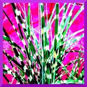 art textile mode fleurs : Rosejardin