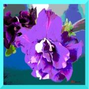 art textile mode fleurs fleur violette : Tendresse