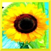 art textile mode fleurs tournesol jaune : Eblouie