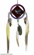 tableau animaux oiseau colibri dreamcatcher couleur : Le totem du colibri