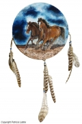 tableau animaux cheval dream catcher attrape reves mustang : Wild horses