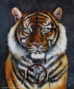 tableau felin tigre siberie inde : Tiger dreamcatcher
