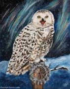 tableau animaux chouette oiseau rapace neige : Snowy owl dreamcatcher