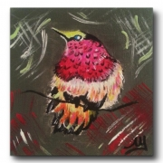 tableau animaux piaf oiseau paradis : PIAF