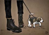 DOCS & DOG