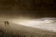 photo marine vagues tempete ocean normandie : Des enfants et des vagues