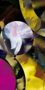 art numerique abstrait asbtraction abstrait reve numerique : Fraction de rêve