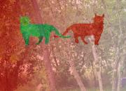 art numerique animaux chat : chat