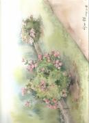 tableau fleurs fleur automne : rose de l'automne