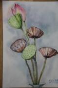 tableau fruits fleur fruit ete : lotus2015