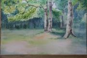 tableau paysages calme bois : les bois à la nuit tombante