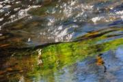 photo autres finistere cours d eau temps de pose long flou : Caresse de printemps