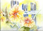 tableau fleurs haute savoie les jardins de hate fleurs capucines : Capucines