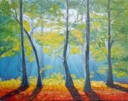 tableau paysages sunrise forest trees light : Forêt à l'aube