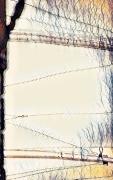 photo abstrait abstrait bateau port mer : Bateau abstrait