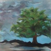 tableau paysages : arbre