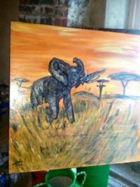 elephant d afrique
