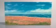 tableau paysages mer soleil normandie debarquement : Normandie
