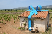 photo landart casot de vigne pyrenees orientales : Cadeau casot