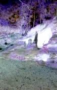 photo abstrait experimentation photographie 2018 delphine vigoureux intime luna : intime Luna