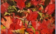 tableau nature morte camailleux rouge violet fleur : Les bougainvilliers de Saint-Rémy