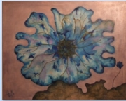 tableau fleurs daltonien bleu bourgeons fleur : Les coquelicots bleus 2014