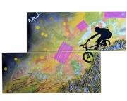 tableau sport bmx descente abstrait velo : move sport