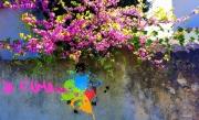 photo fleurs tag amour fleur mur : Je t'aime...