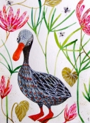 dessin animaux oiseau celine marcoz : Canard
