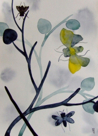 Insectes Fleurs
