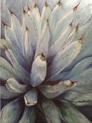 tableau fleurs plantes grasses agaves bleues nature morte moderne : Agaves bleues