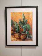 tableau fleurs cactus plantes pots : Cactus