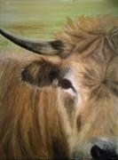 tableau animaux vache nature animal montagne : Vache