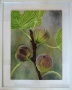 tableau fruits fruits figues nature provence : Qui veut des figues?