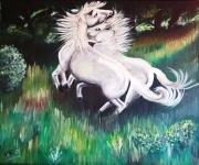 tableau animaux cheval blanc camargue prairie : Chevaux blancs