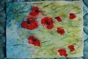 tableau fleurs coquelicots fleurs : Mes coquelicots