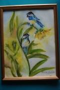 tableau animaux pinsons oiseaux : Mes pinsons