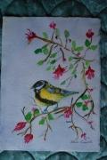 tableau animaux pinson oiseau nature : Petit pinson