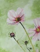 tableau fleurs abeille vert : jolie fleur butinée