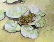 tableau animaux grenouille vert aquarelle plante : Grenouille sur plante flottante