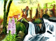 tableau paysages renard cascade poetique rochers : La nature vagabonde