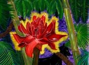 tableau paysages amazonie panthere rose nature : Vie et nature en Amazonie